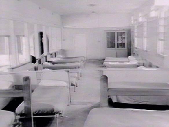 ward 1961