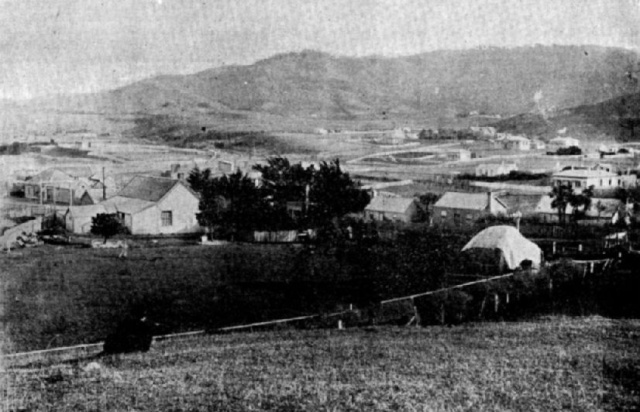 johnsonville_wellington_circa_1885